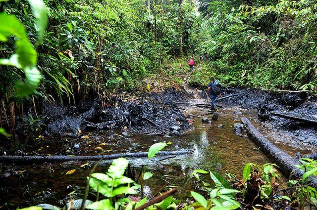 La quebrada El Tigrillo, a una hora del resguardo, está inundada de petróleo. / Foto: Nelson Sierra