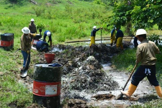 Las imágenes que se derivan de los impactos que la explotación petrolera está generando en inmediaciones de la ciénaga de Palagua, ubicada en el municipio de Puerto Boyacá, son inquietantes.