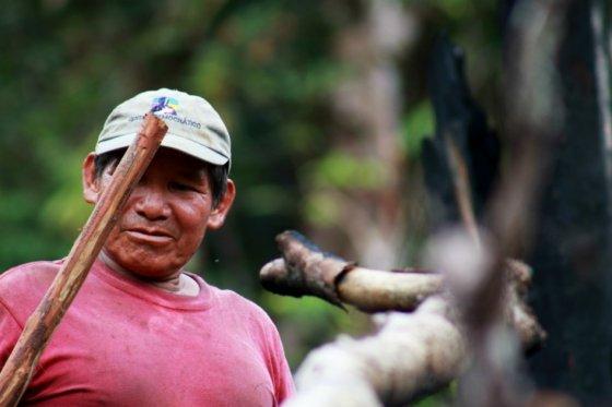 Salvador Fernández mientras cuñtiva yuca brava en su chagra (huerta).